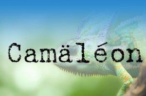Camaeleon
