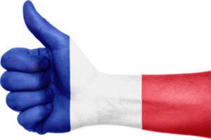 Französisch Partnersprache