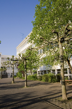 "Schülerprojekt ""Neugestaltung des Schulhofs"""