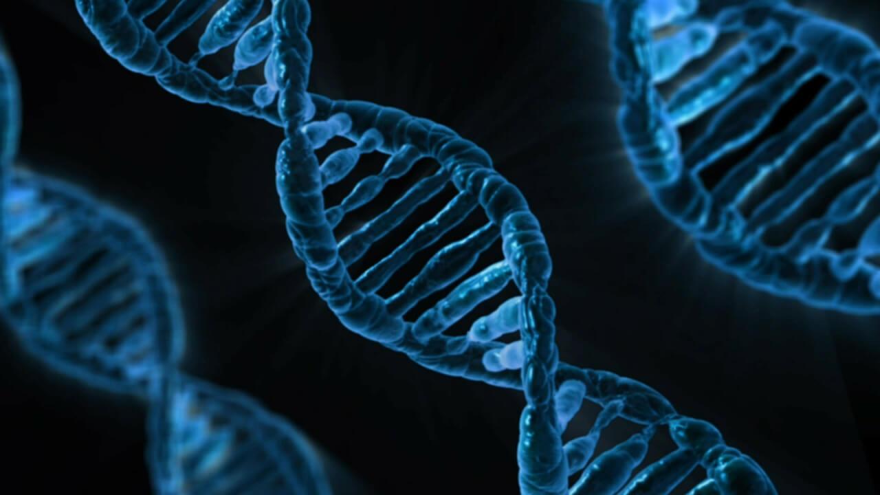 Biologie-Glossare