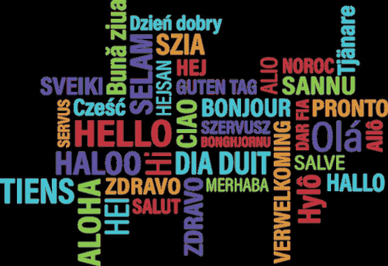 Sprachenturnier 2017: Erlebnisbericht von DFG-Preisträgerin Elisa Gelz