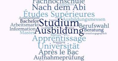 Berufs- und Studienberatung am DFG